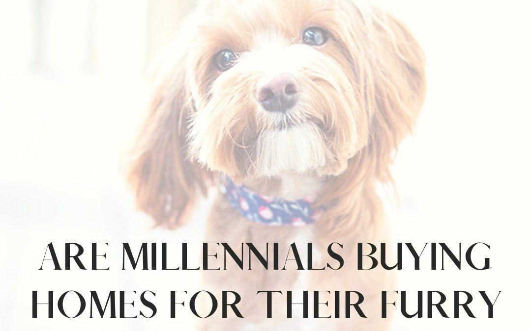 Millennials are Buying Homes for their Furry Friends